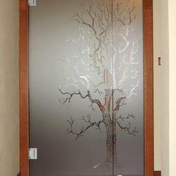 Dveře skleněné a skleněné stěny - 3